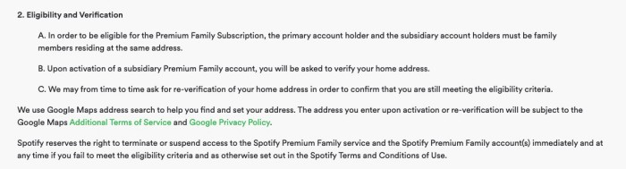 Spotify Terms and Condition